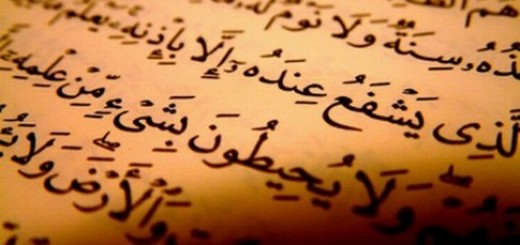 compilation-of-quran