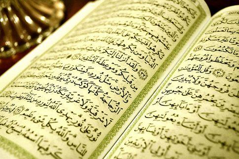 Quran study book