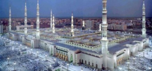 To Get to Know The City of Medina
